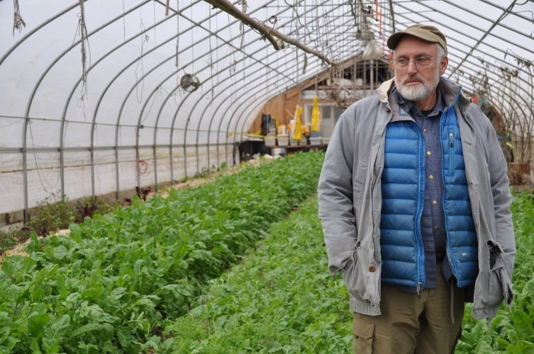 Farmer Morse Pitts in greenhouse